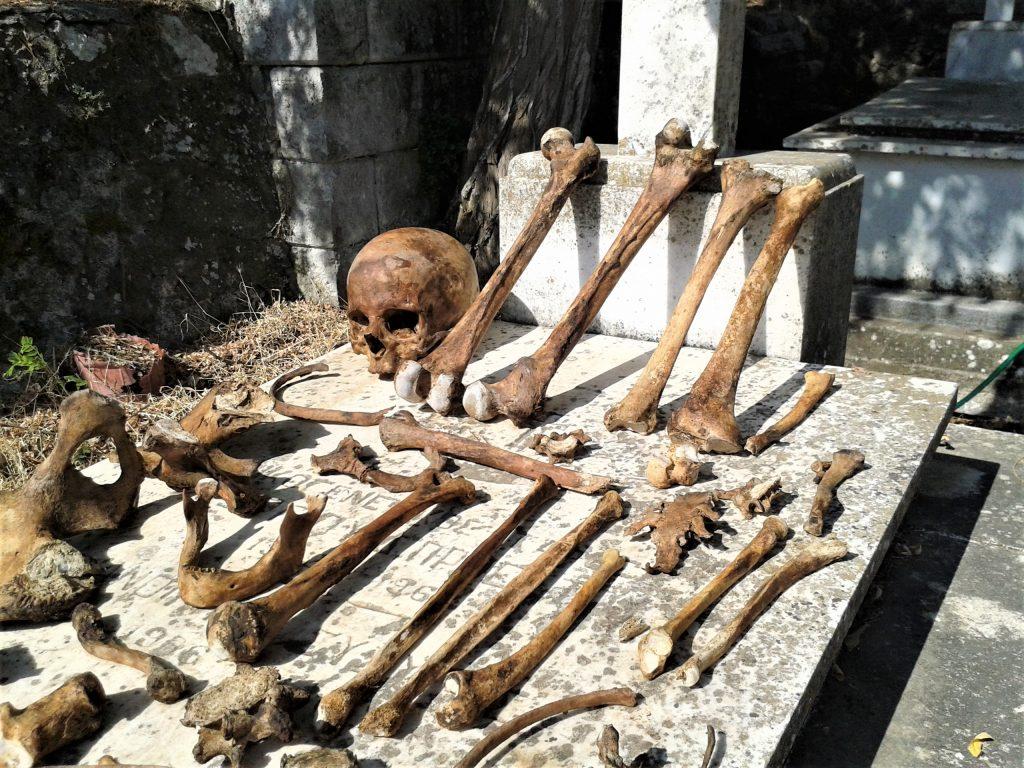 Lesbos Filia Friedhof Knochen Μουσείο Φιλιά Λέσβου